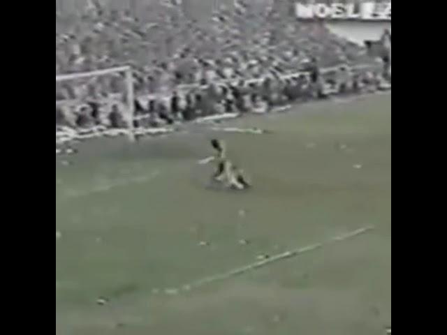 El gol de Hugo Perotti a Ferro en 1981