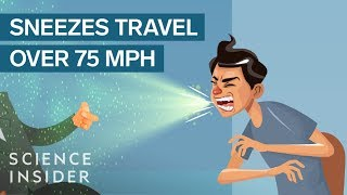 How Contagious Is A Single Sneeze?