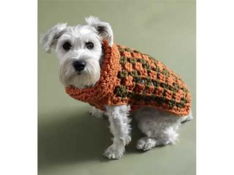 Crochet Dog Jackets Set Of Picture Collection And Ideas Dog