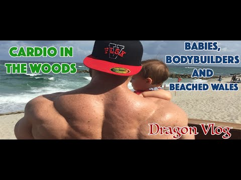 Babies, Bodybuilders and Beached Wales - YouTube