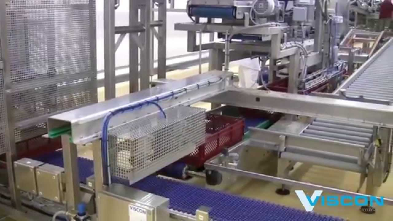 Viscon Hatchery Automation - Chick processing - YouTube