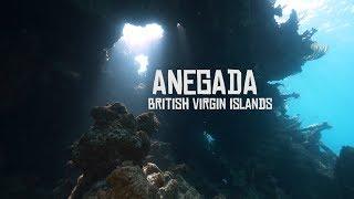 Diving in Anegada Island