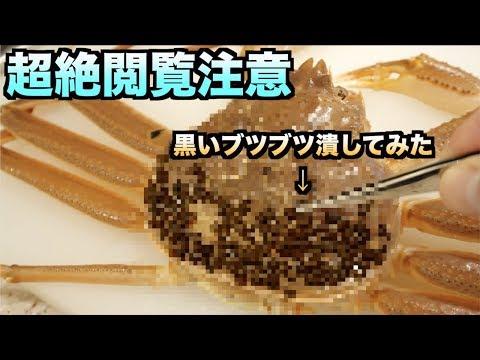 超絶閲覧注意!!カニの甲羅の'黒いブツブツ'潰したら寄生虫がにょろっと飛び出てきた!!