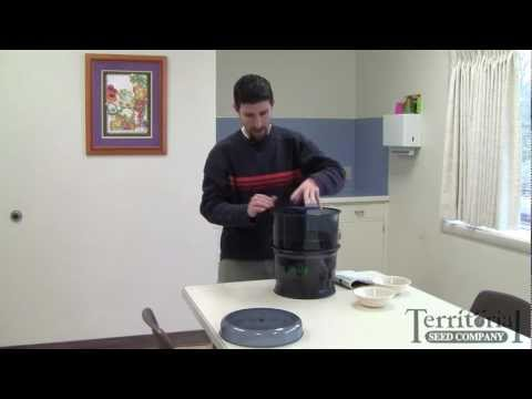 How To Use The Freshlife Sprouter From Territorial Seed Co.