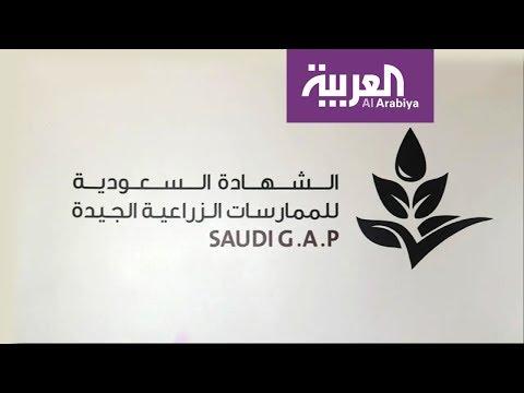 وزارة البيئة والمياه والزراعة تطلق شهادة -سعودي جاب-  - 12:54-2018 / 12 / 6