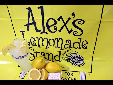 Alex's Lemonade Stand at Collegium Charter School 2017