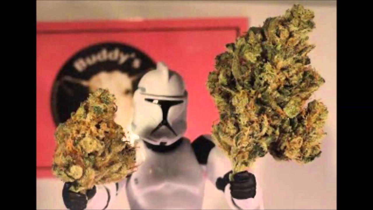 Cannabis Club San Jose Medical Marijuana Dispensaries San Jose Ca