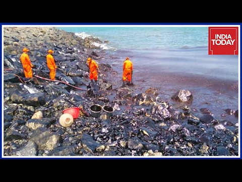 Chennai Oil Spill: Fishermen Demand Compensation For Their Losses