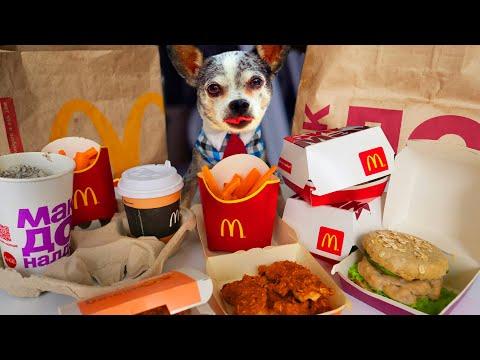 Повторяю меню McDonald's для собак и кошки! Готовлю МакДональдс на День Рождения собаки