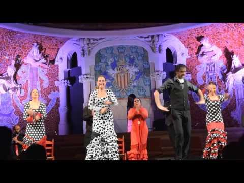 Arte Flamenco en el Palau de la Musica Catalana