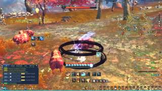 Blade and Soul Lyn Blade Dancer Animation Cancelling