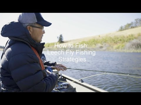 How To Fish: Leech Fly Fishing Strategies | GoFishBC