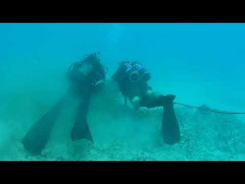 Underwater Demolition Training