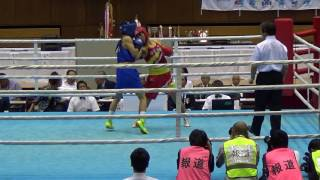 H29 IH決勝 F級 中垣龍汰朗 対 杉本聖弥  ボクシング