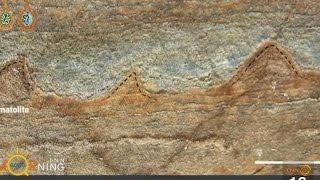 นักวิทย์ออสเตรเลียพบฟอสซิลเก่าแก่ที่สุดในโลก