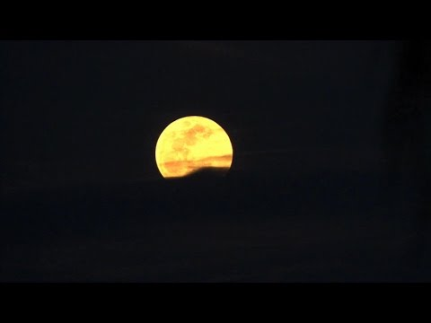 Download Asha ~ Fiery moon