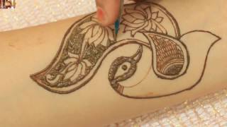 How to make beautiful henna peacock mehndi Draw Mehndi Designs for Hands & Legs