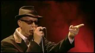 Alain Bashung - Volontaire