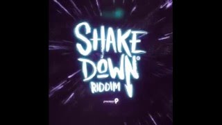 In De Middle - Shake Down Riddim (Official Audio) | Tian Winter