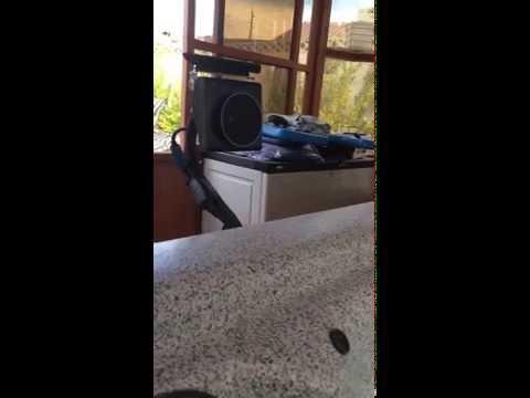 Amazon Echo Spa Video DEMO