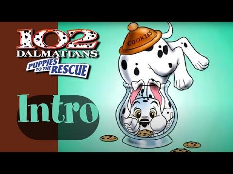 dalmatian puppy rescue