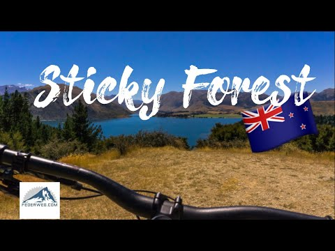 Sticky Forest Mountainbiking Trails - Wanaka, Neuseeland