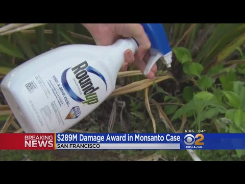 Monsanto Ordered To Pay $289M To Dying Groundskeeper Who Blames Weed Killer For Cancer