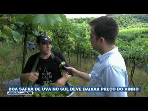 Grande safra de uva deve baixar preços de produtos