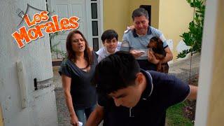 INDEPENDENCIA   Los Morales