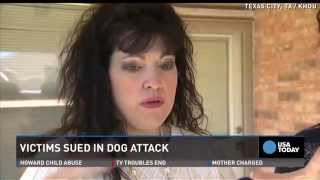 Woman Sues Owners Of Dead Beagle Killed By Her 4 Dogs