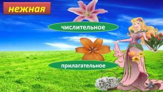 Вальс цветов    Тест по русскому языку Части речи 5 класс