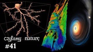 Czytamy naturę #41   Mózg w ultraHD - O drganiach kabli - Karzeł zjadł planetę thumbnail