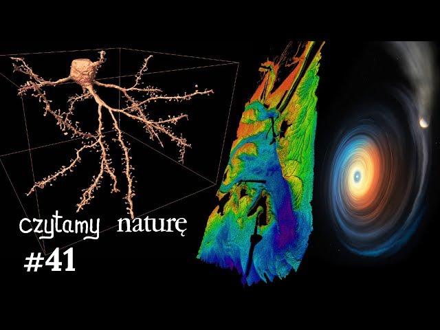 Czytamy naturę #41 | Mózg w ultraHD - O drganiach kabli - Karzeł zjadł planetę