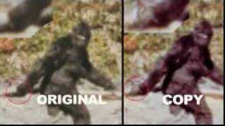 Patterson Gimlin Bigfoot Film- Bill Munns Analysis thumbnail