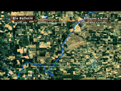 Science Bulletins: Releasing a River