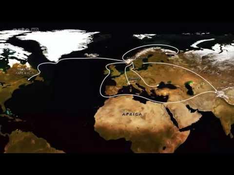 Das Wikinger Schwert - Dokumentation