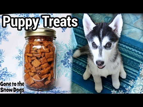 Puppy Training Treats |  DIY Dog Treats 119