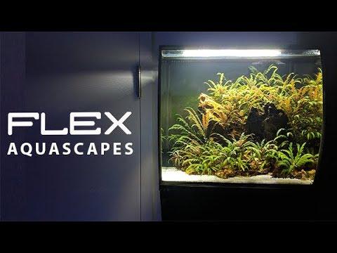Fluval Flex Aquascapes