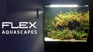 Fluval Flex Aquascapes Youtube