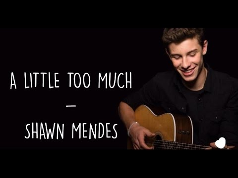 A Little Too Much - Shawn Mendes (Lyrics)