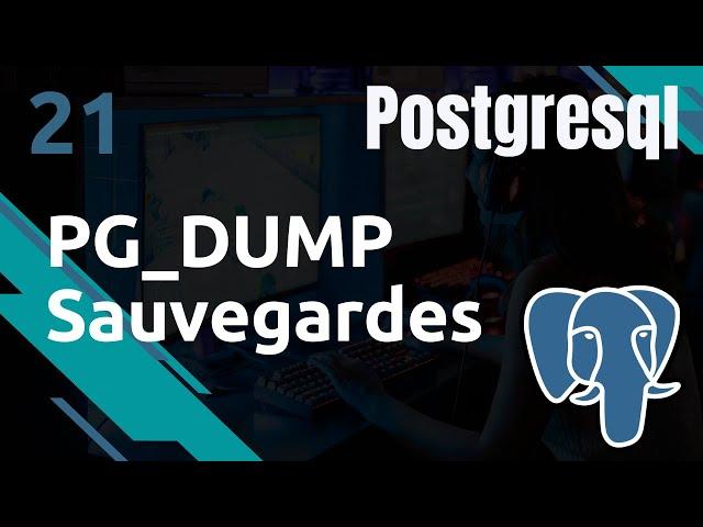 PostgreSQL - 21. Sauvegardes : pg_dump pour vos sauvegardes | tutos fr