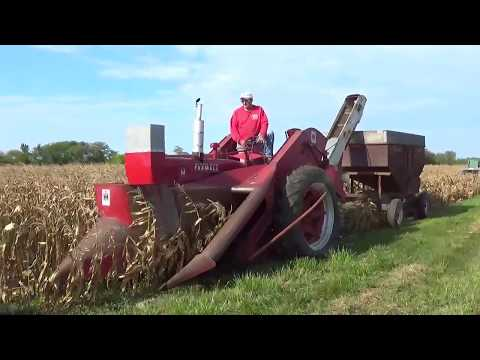 Picking Corn at the 2017 Half Century of Progress