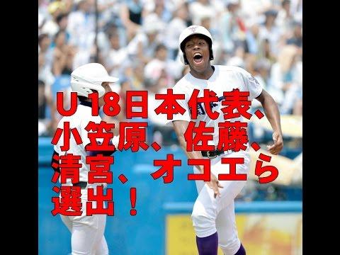 U18日本代表、小笠原、佐藤、清宮、オコエら選出!