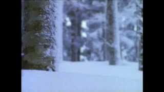 森田童子 - 蒸留反応