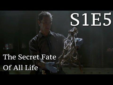 """True Detective """"The Secret Fate of All Life"""" Review (S1E5)"""