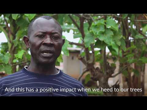 The Farmerline Farmer Profile - Episode 1: Ben Owusu