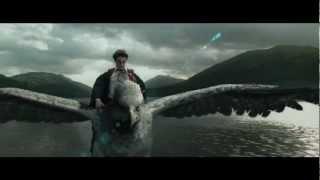 Harry Potter Meets With Buckbeak