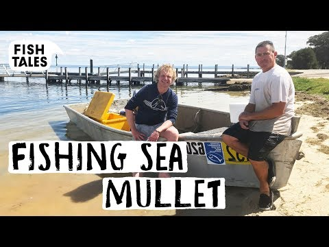 Fishing SEA MULLET In Western AUSTRALIA | Bart Van Olphen