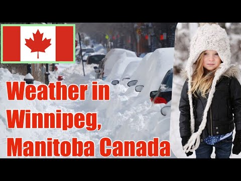 Weather  In Winnipeg Manitoba Canada..snow In Canada.