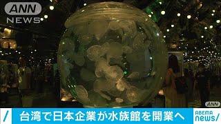 横浜八景島 台湾で来月開業の水族館「Xpark」公開(20/07/30) - YouTube